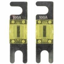 CLMANL100-V7 - MINI ANL BIZTOSÍTÉK 100A