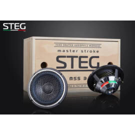 STEG MSS3